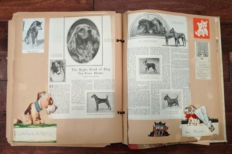 BrewerDogScrapbook (4)